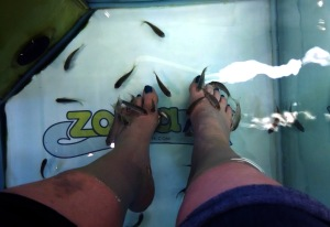 FIsh pedicure 2