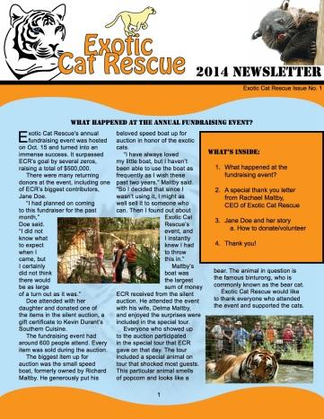 Newsletter 1 ECR